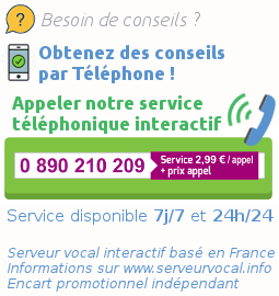 Service telephonique